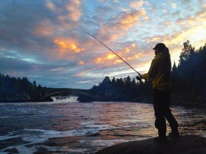 Laxfiske nedanför Jockfallet ger goda chanser till fångst. Laxarna samlas här innan sin fortsatta färd uppför laxtrappan. Foto: Linnea Nilsson-Waara.