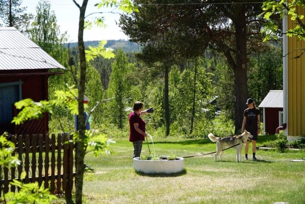 Hemma på gården i Jockfall. Foto: Linnea Nilsson-Waara